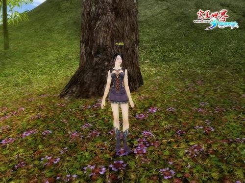 《完美》玩家原创 唯美诗词话npc情事(二)